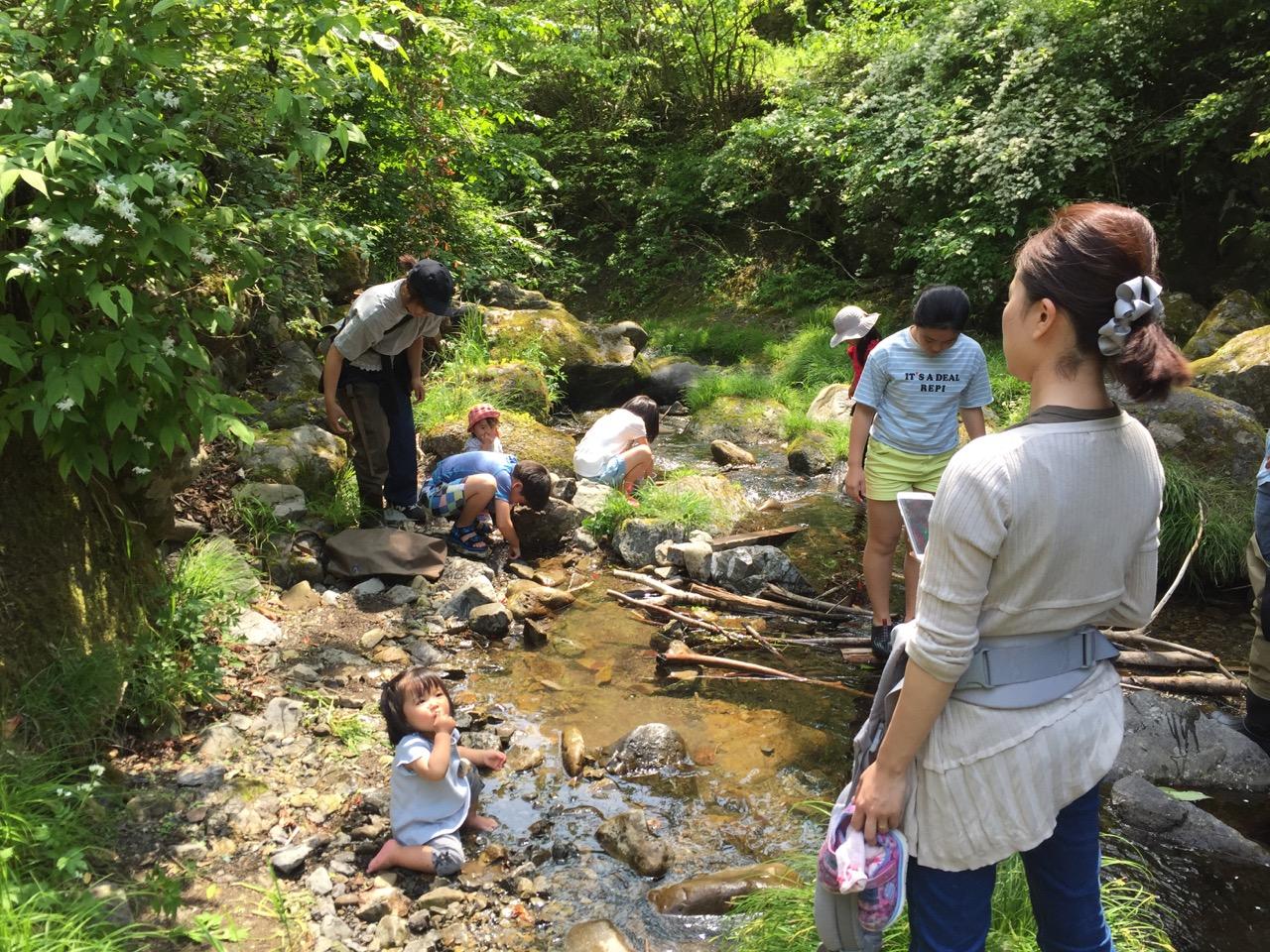 開催レポート:5/12 キトコト少年団 〜お魚さんとあそぼう〜